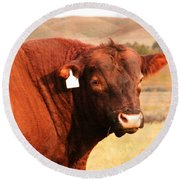 Dont Mess With The Bull Round Beach Towel