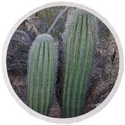Double Barrel Saguaro Round Beach Towel