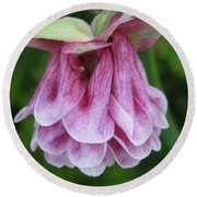 Double Columbine Named Pink Tower Round Beach Towel