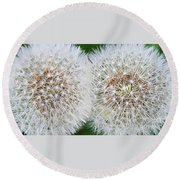 Double Dandelion Wishes Round Beach Towel