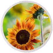 Double Dose Of Sunshine Round Beach Towel