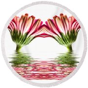 Double Pink Gerbera Flood Round Beach Towel