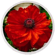 Double Poppy Round Beach Towel