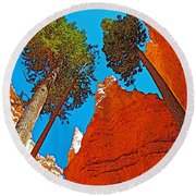 Douglas Firs On Wall Street On Navajo Trail In Bryce Canyon National Park-utah Round Beach Towel