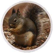 Douglas's Squirrel Round Beach Towel