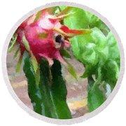 Dragon Fruit Also Know As Pitaya Or Pitahaya Round Beach Towel