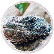 Dragon Lizzard Portrait Closeup Round Beach Towel