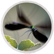 Dragonfly In Flight Round Beach Towel