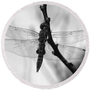 Dragonfly Mosaic Round Beach Towel