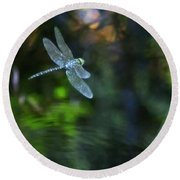 Dragonfly No 1 Round Beach Towel