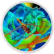 Dragonfly On A Cosmic Rose Round Beach Towel