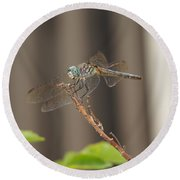 Dragonfly Profile Round Beach Towel