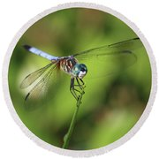 Dragonfly Square Round Beach Towel