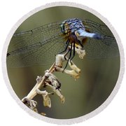 Dragonfly Wing Details Round Beach Towel