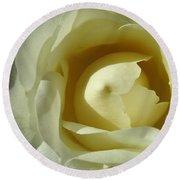Dramatic White Rose 3 Round Beach Towel