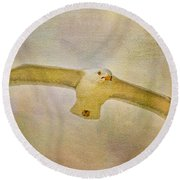 Dream World Seagull Round Beach Towel