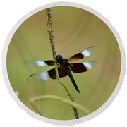 Dreaming Dragonfly Round Beach Towel
