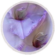 Dreams Of Purple Gladiola Flowers Round Beach Towel by Jennie Marie Schell