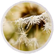 Dreamy Dandelion Round Beach Towel