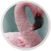 Dreamy Pink Flamingo Round Beach Towel