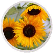 Dreamy Sunflower Day Round Beach Towel