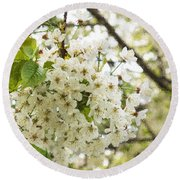 Dreamy White Cherry Blossoms - Impressions Of Spring Round Beach Towel