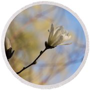 Dreamy Wild Magnolia In The Forest Round Beach Towel