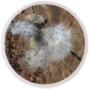 Dried Milk Weed  Round Beach Towel