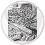 Critter In The Driftwood  Round Beach Towel