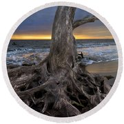Driftwood On Jekyll Island Round Beach Towel by Debra and Dave Vanderlaan