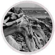 Driftwood On Rocky Beach Round Beach Towel
