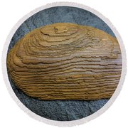 Driftwood On Slate Round Beach Towel