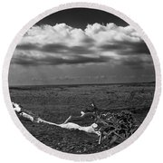 Driftwood On The Beach At Whitefish Point Round Beach Towel