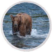 Dripping Grizzly Round Beach Towel