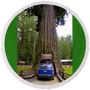 Drive Through Redwood Tree Round Beach Towel