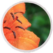 Droplets On Tiger Lily Round Beach Towel