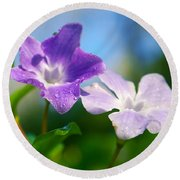 Drops On Violets Round Beach Towel by Carlos Caetano