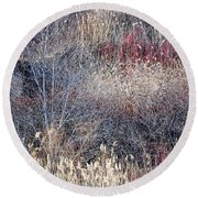 Dry Grasses And Bare Trees Round Beach Towel