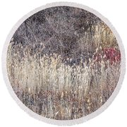 Dry Grasses And Bare Trees In Winter Forest Round Beach Towel
