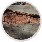 Dry Rotting Tree Round Beach Towel