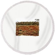 Dry Swamp Round Beach Towel