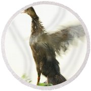 Duck Flapping Wings Round Beach Towel