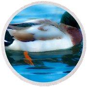 Duck Glide Round Beach Towel