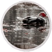 Duck In Lake  Round Beach Towel