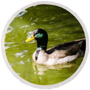 Duck In The Park Round Beach Towel
