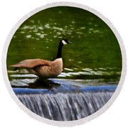 Duck On The River Wye Waterfall - In Bakewell Peak District - England Round Beach Towel