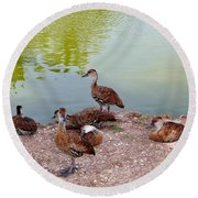 Duck Pond Round Beach Towel
