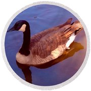 Duck Swimming Round Beach Towel