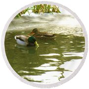 Duck Swimming In A Frozen Lake Round Beach Towel