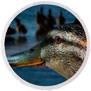 Duck Watching Ducks Round Beach Towel